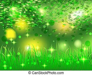 bello, luminoso, astratto, foresta