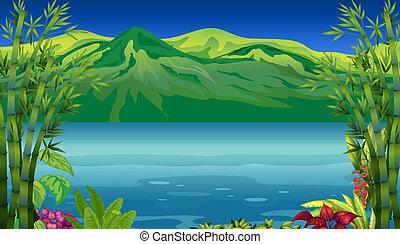 bello, montagna, fiume