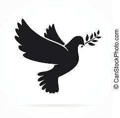 bello, pace, colomba, bianco, vettore, silhouette