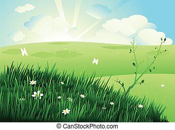 bello, paesaggio, natura
