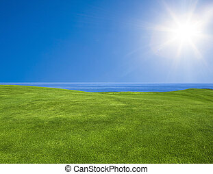bello, paesaggio verde