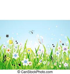 bello, primavera, prato