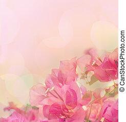bello, rosa, astratto, flowers., disegno, fondo, confine floreale