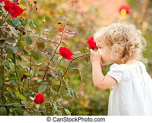 bello, rosa, bambino, odorando