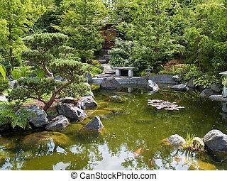 bello, stagno, fish, giardino, classico