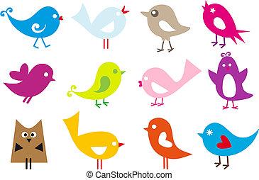 bello, uccelli