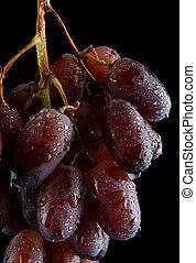 berries., uva, gocce, succoso, acqua