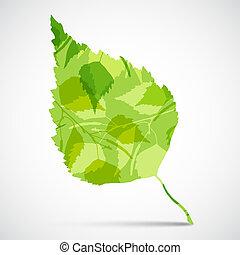 betulla, fondo, verde, concetto, leaf.