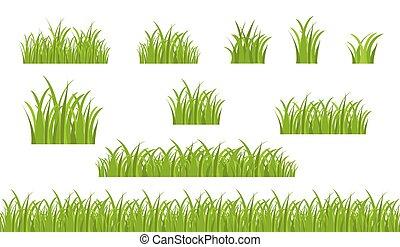 bianco, bordo, erba, fondo, verde