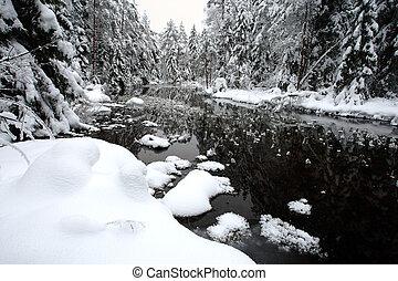bianco, paesaggio inverno