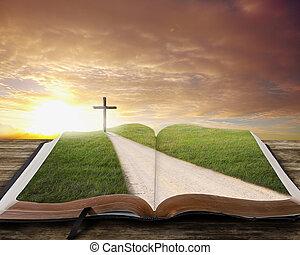 bibbia, aperto, road.