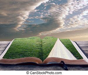bibbia, aperto, sentiero