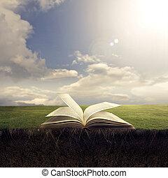 bibbia, aperto, suolo