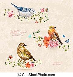 birds., carino, pittura watercolor, collezione