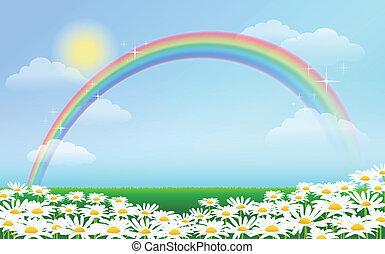 blu, arcobaleno, cielo, margherite, contro