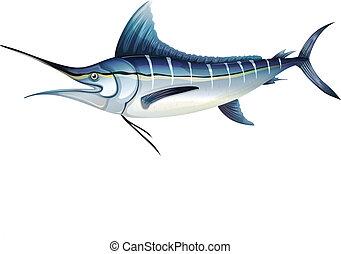 blu, atlantico, marlin
