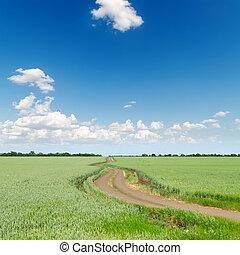blu, campi, cielo, profondo, verde, nuvoloso, sotto, strada