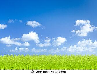 blu, campi, cielo, sfondo verde, erba