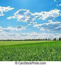 blu, campi, cielo, verde, nuvoloso