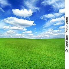 blu, campo, cielo verde