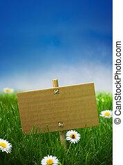 blu, cartone, giardino, natura, un po', cielo, segno, erba, fondo, verde, coccinella, fiori, margherite, vuoto
