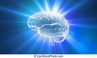 blu, cervello, brilla luce incerta, contorno