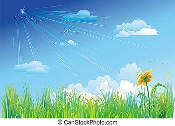 blu, erba, cielo, fondo