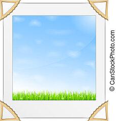 blu, foto, erba, cielo, verde