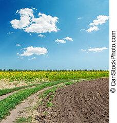 blu, nubi, campi, cielo, sotto, agricoltura, strada