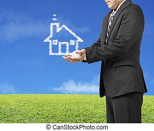 blu, prato, apertura, casa, cielo, forma, sfondo verde, uomo affari, palma, nuvola