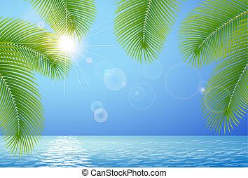 blu, rami, cielo, soleggiato, palma, mare