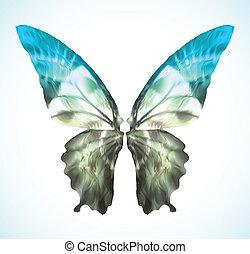 blu, vibrante, vettore, farfalla, isolated.
