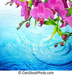 blu, viola, orchidea, acqua, increspato
