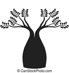 boab, australiano, albero