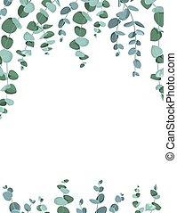 bordo, cornice, bianco, eucalipto, fondo.