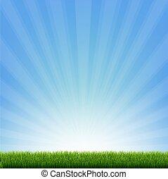 bordo, verde blu, sunburst, erba