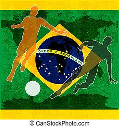 brasile, 2014