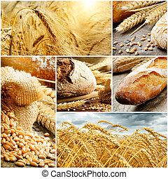 bread, tradizionale, cereale, set, frumento