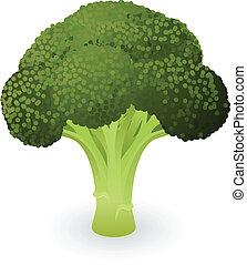 broccolo, illustrazione