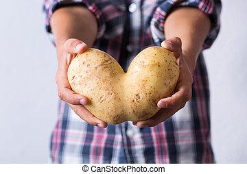 brutto, modellato, mani, cuore, verdura, trendy, patata