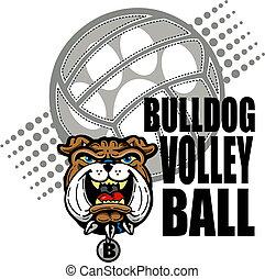 bulldog, disegno, pallavolo