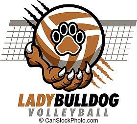bulldog, signora, pallavolo