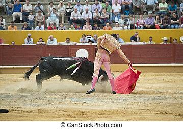 bullfight., tipico