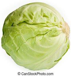 cabbage-head