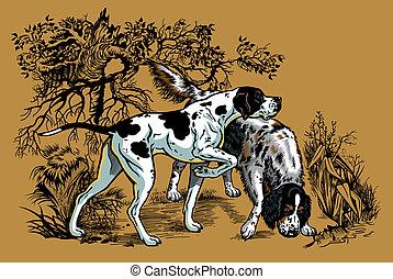 caccia, illustrazione, cani