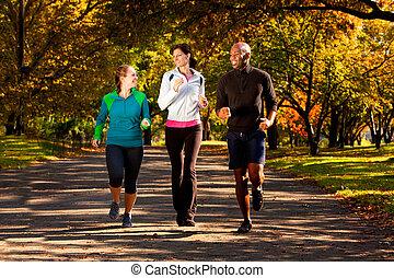 cadere, parco, fare jogging