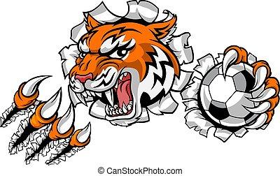 calcio, sport, giocatore, tiger, animale, mascotte, football