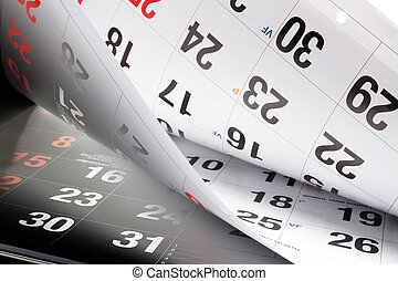 calendario, pagine