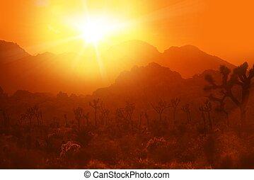 calore, california, deserto