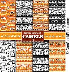 cammelli, seamless, modello, set